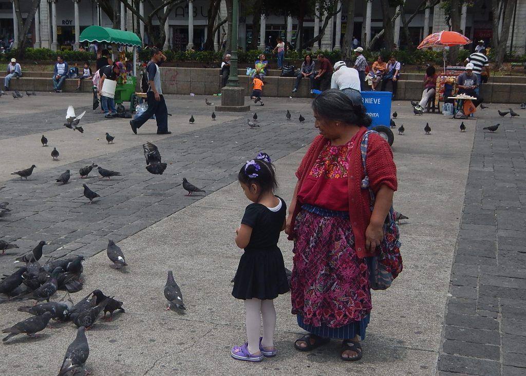 Guate's Square