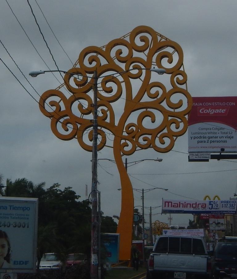 Managua's Trees
