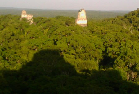 Dusk Settles on Tikal