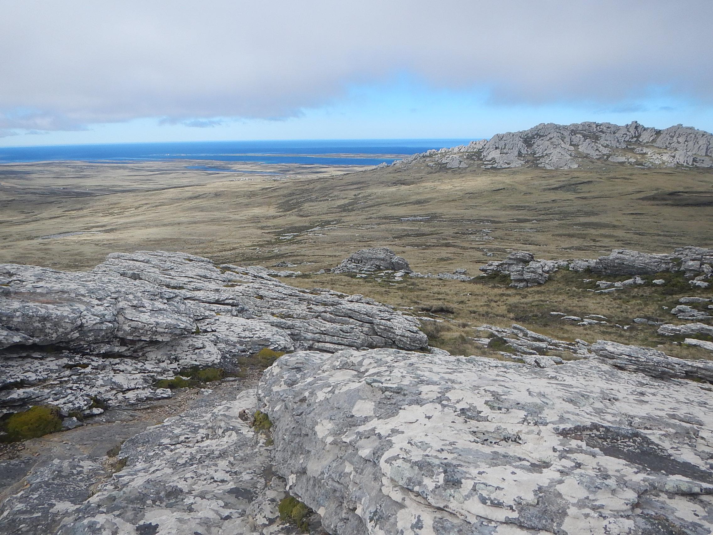 Falklands Vista