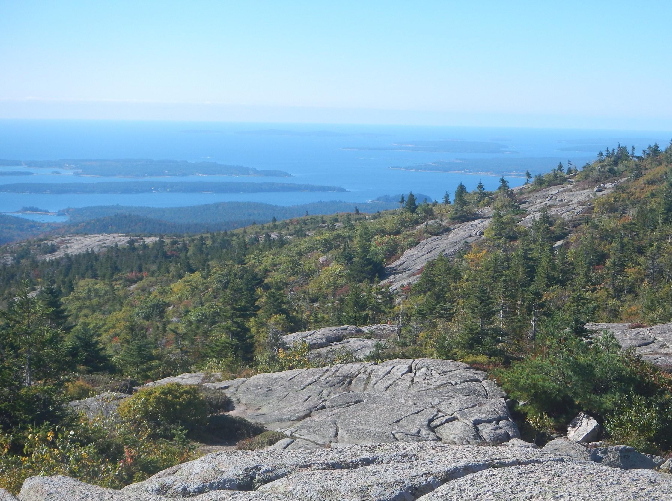Acadia Vista