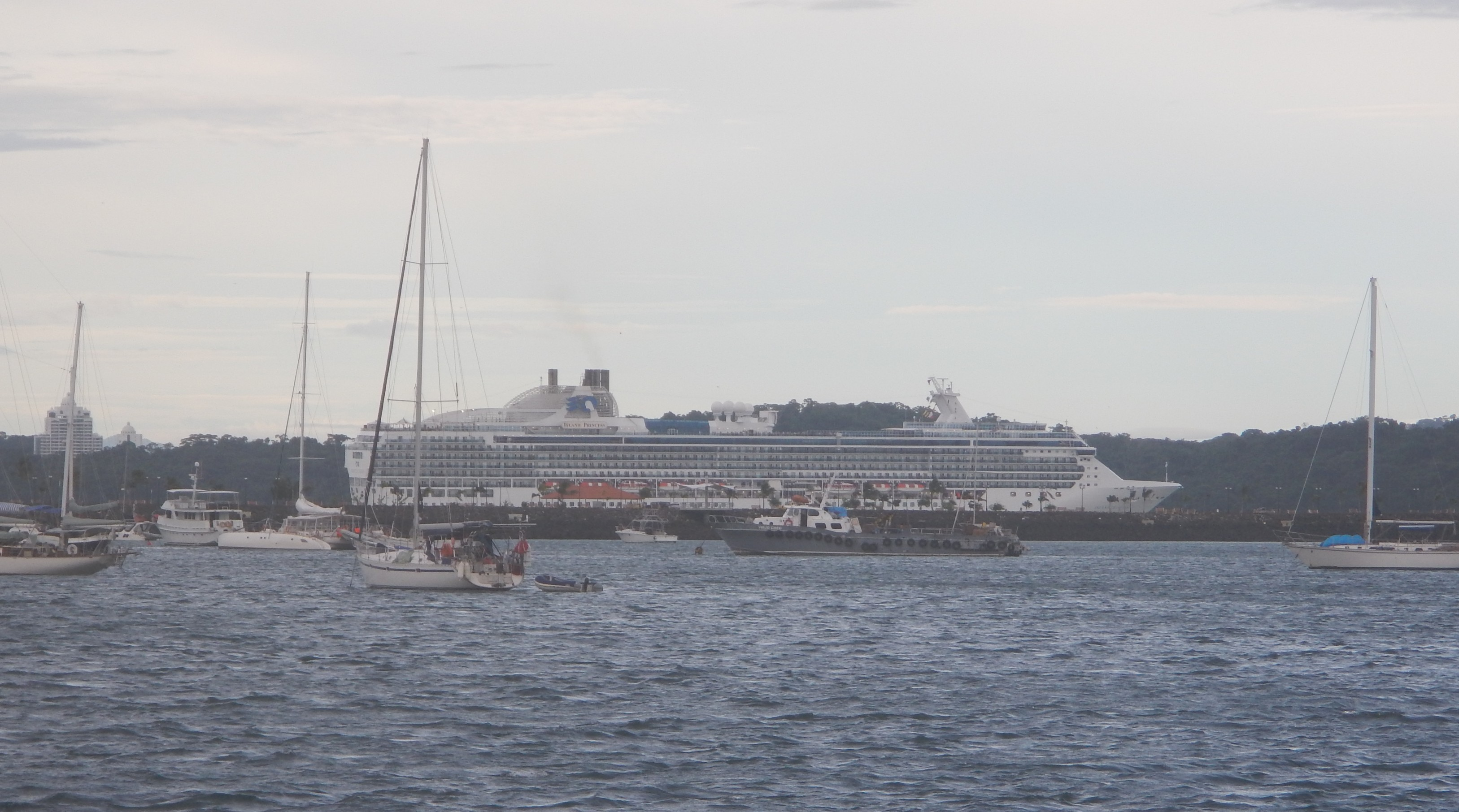 Cruise Ship Going By